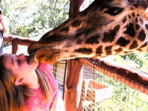 Giraffe PDA